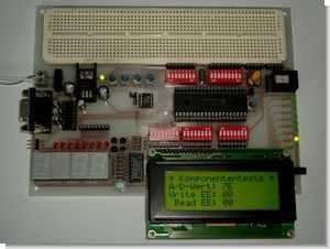 Multi-functional PICmicro Development Board (Breadboard Supported)
