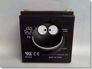 6V 4AH Fake Battery