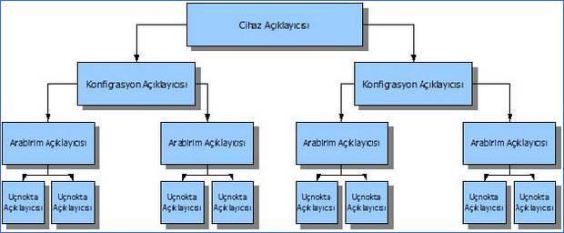 Cấu trúc phân cấp