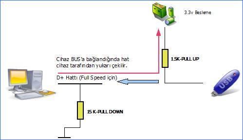 USB-thiết bị-phát hiện