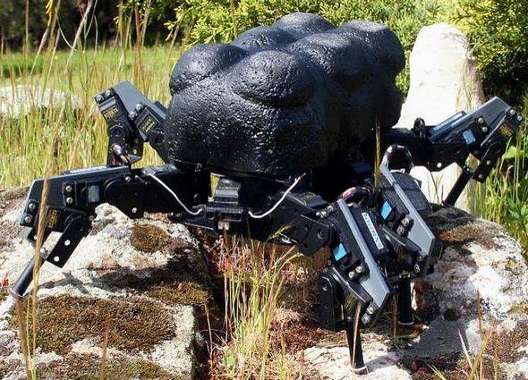 robust-hexapod-robot-of-3-dofleg-rough-terrain