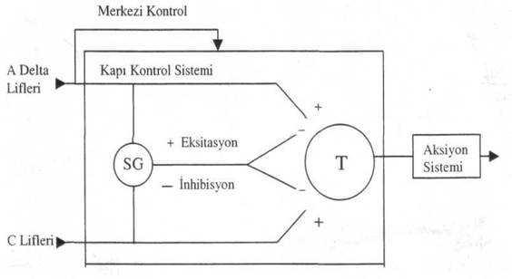 kapi_kontrol_sistemi