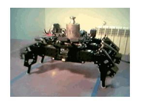 Çeşitli Robot Projeleri
