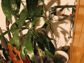 Atmega8 ile Bilgisayar bağlantılı Çiçek Sulama Devresi