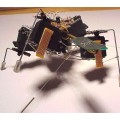 Bugs Robot with TTL robotic bug 120x120
