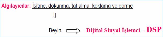 dijital-sinyal-isemci-dsp