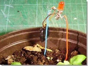 Led göstergeli basit çiçek sulama alarmı