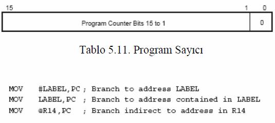 program-sayici-msp430