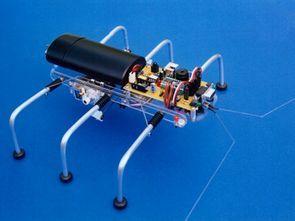 Altı Bacaklı Örümcek Robot Basic Stamp 2