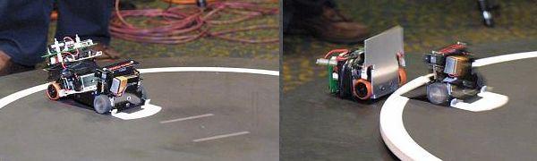 sumo-robot-mini-mikrocontroller-delta-force-robotic-rally-3