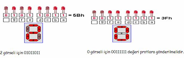 microc-7segment
