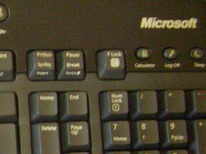 Microsoft Wireless klavye temizliği