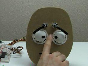 PIC18F452 Robot Yüz 5 Servo Motor Kontrolü