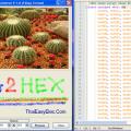 Resimleri Hex Formatına Çeviren Program