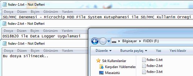 MicroSD_Dosyalari