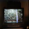 Motorola MC68HC908QY4 MCU Remote Observation Station ROS TVoutput 120x120