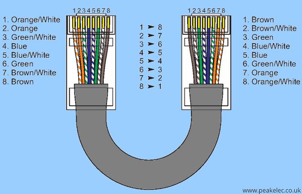 100 Cat5e Network Cable 1ft Cat6 Blue Ethernet Patch Cable