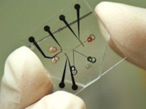 Nano teknoloji nedir? Nano Teknoloji 2