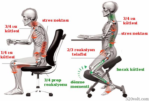diz-sandalyesi-oturma-performansi